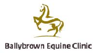 Ballybrown Equine Clinic